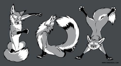 YOGA Foxes grey (2018)